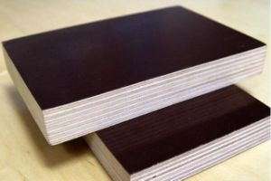 Film Faced Poplar/Birch Combi Plywood for Construction