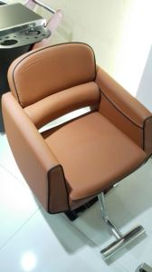 Newest Delicate Hydraulic Pump Styling Chair (MY-008-02) pictures & photos