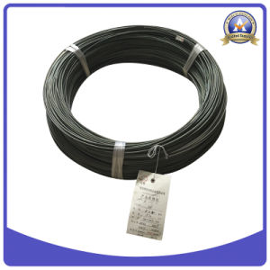 Oxidized Positive N Type Thermocouple Wire
