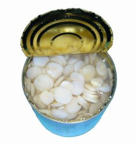 425g Canned Water Chestnut with Cheap Price pictures & photos