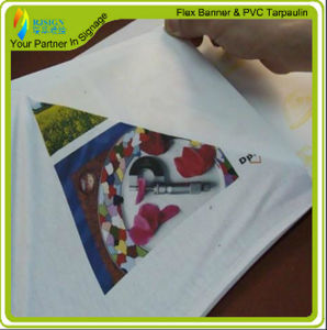 Light Inkjet and Laser Printing Heat Transfer Paper for T-Shirt pictures & photos
