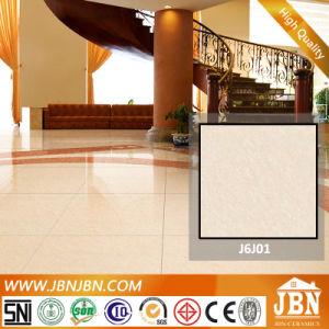 60X60 Tropicana Floor Ceramics Porcelanato Porcelain Tile (J6J01) pictures & photos