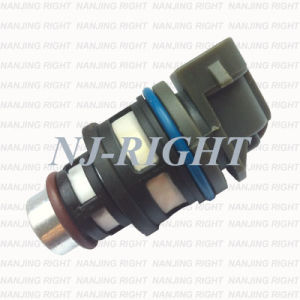 DELPHI Fuel Injector Fit Chevy GMC Cavalier Isuzu 17113197, FJ100, 17113124 pictures & photos