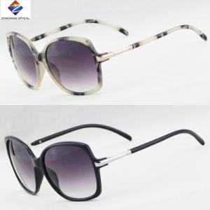 New Designer Fashion Plastic Sunglasses