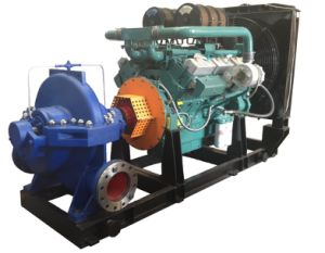 Diesel Engine Pump (XS300-435) pictures & photos