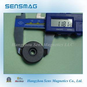 Ferrite Ring Magnet for Speaker Magnet pictures & photos