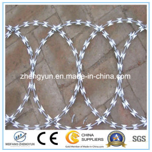 Good Quality Barbed Wire Manufacturer Razor Blade Barbed Wire pictures & photos