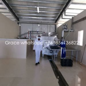 1000 Birds /Hour Poultry Slaughter House Equipment with Matching Workshop Construction pictures & photos