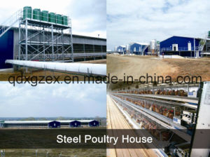 Steel Structure Poultry House / Chicken House (pH-16133) pictures & photos