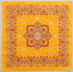 Custom Made Design Silk Printing Cotton Square Bandana pictures & photos