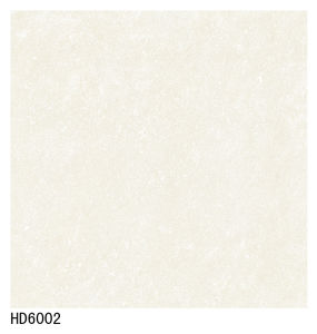 Good Quality AAA Soluble Salt Floor Tile 600X600 800X800 pictures & photos