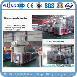Yulong Brand Professional Manufacture Vertical Ring-Die Biomass 4-6t/H Wood Pellet Plant pictures & photos