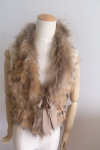 Natural Fur Vest Natural Fur Collar Es03 pictures & photos