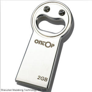 Best Promotional Cute Metal USB Flash Drives USB Flash pictures & photos
