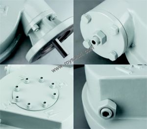 Part-Turn Valve Worm Gearbox pictures & photos