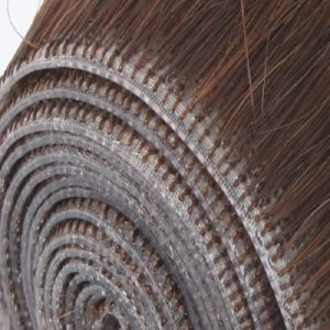 100% Human Hair Skin Weft Hair Extension pictures & photos