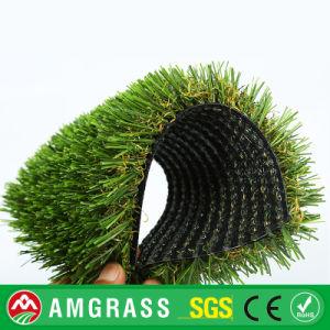 30mm Garden/Patio Decoration Landsccaping Artificial Grass pictures & photos