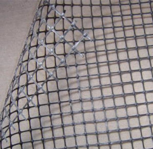 Plastic Biaxial Geogrid for Roadbed pictures & photos