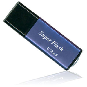 USB2.0 Logo Customized Plastic USB Flash Disk pictures & photos