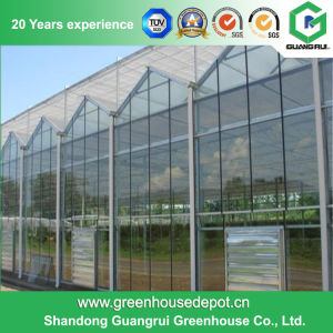 Glass Greenhouse for Tomato and Cucumber Planting pictures & photos