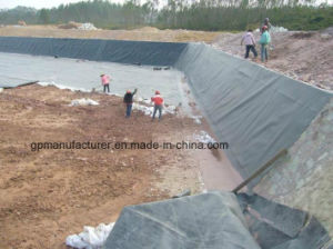 Shrimp Pond Geomembrane pictures & photos
