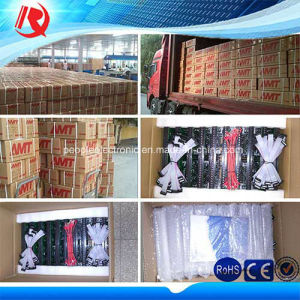 32*16 Dots Outdoor P10 LED Display Module pictures & photos