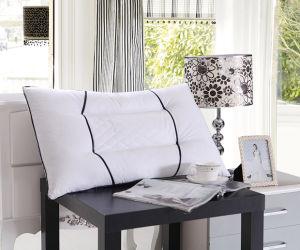 White Plain 100% Cotton Home Cotton Pillow pictures & photos