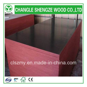 High Quality Best Price Film Faced Plywood pictures & photos