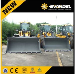 Caise Wheel Loader with CE Certificate for Sale pictures & photos