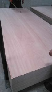Poplar Core Plywood (1220*2440mm) pictures & photos