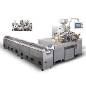 Softgel Encapsulation Machine pictures & photos