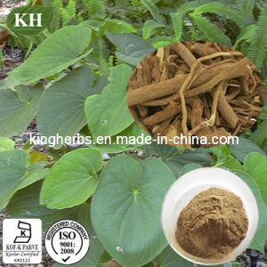 Natural Kavalactone Herbal Extract 70% / Kava Kava Extract Kavalactones pictures & photos