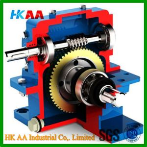 Worm Gear, Worm Gear Motor, Worm Gear Reducer pictures & photos