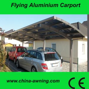 Aluminum Carports with PC Carbonate Roof --F9100