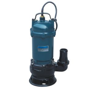 Sewage Pump (Very good quality with CE) pictures & photos