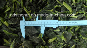 IQF Frozen Spinach Chop (3-5cm) pictures & photos