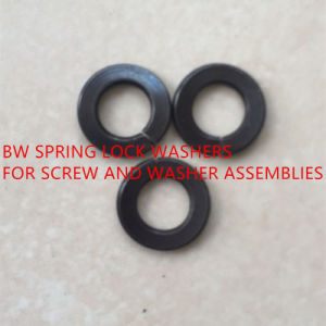 DIN6905 Spring Lock Washers for Screw and Washer Assemblies pictures & photos