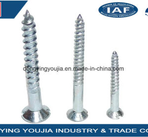 Countersunk Head Slotted Drive Self Tapping Screw pictures & photos