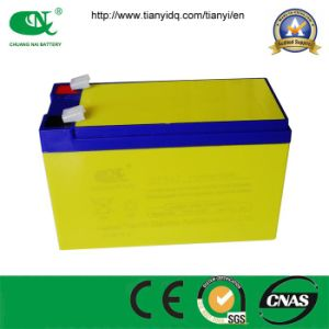 Power Battery 12V7ah Lead Acid Battery for Electric Sprayer/Toy