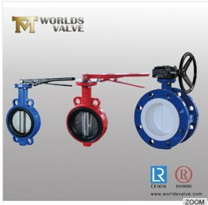 Concentric Wafer/Lug/Flange Butterfly Valve with Renewable Rubber Seal