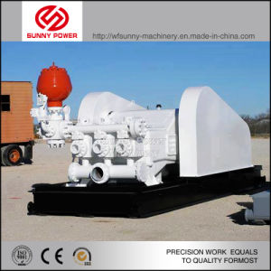 Diesel Plunger Pump for Oil Field with Pressure 80MPa pictures & photos