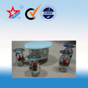 Dn 15 and Dn 20 Type of Fire Sprinkler pictures & photos