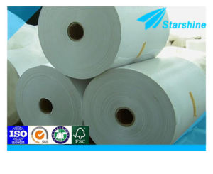 PE Coated Light Weight Coated Paper in Sheet