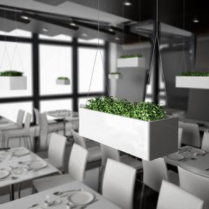 Uispair Modern Office Garden Decoration Hanging Square Steel Garden Planter pictures & photos