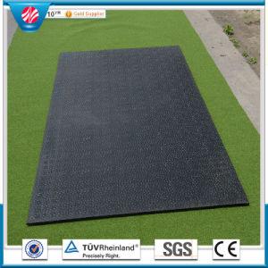 Animal Rubber Mat, Antislip Cow Flooring Horse Mat pictures & photos