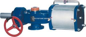 Pneumatic Actuator (QZT-SD)