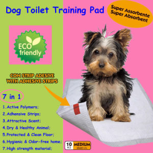 2014 Top Sale 60*60cm Super Absorbent Training Pad pictures & photos