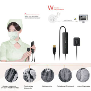 High Efficiency Shanghai Handy Teeth Imaging System Digital Dental Sensor pictures & photos