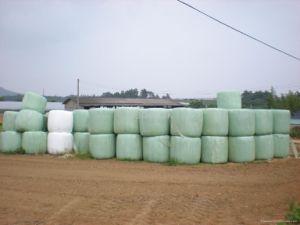 Bale Wrap Film SGS Certificate for Black/White/Green 750X1500X25um, 500X1500X25um, 250X1800X25um pictures & photos