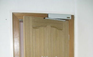 China Factory Automatic Swing Door with Best Price (DS-S180) pictures & photos